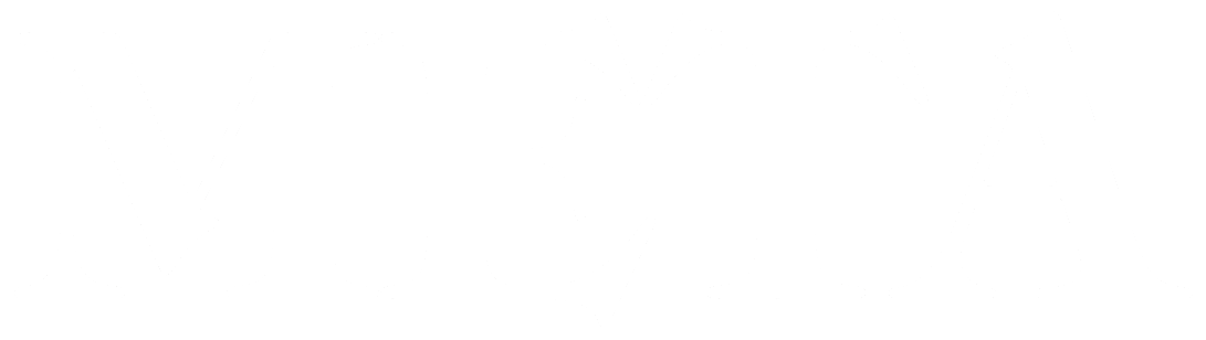 META Srl - Logo Inverted Footer